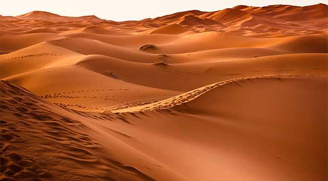 Image of a desert