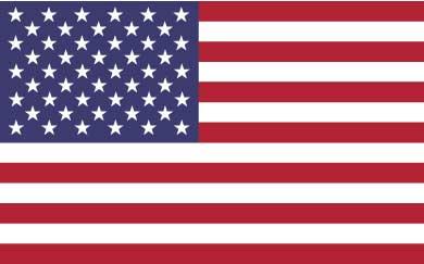 USA Flag International Removals