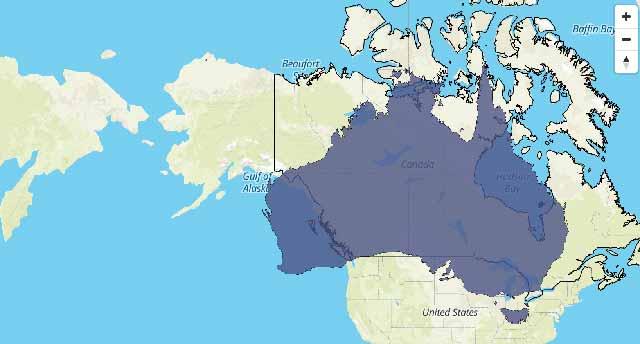 Australia Size versus Canada