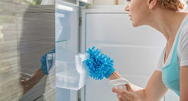 Clean All Furniture Pieces Including Your Fridge