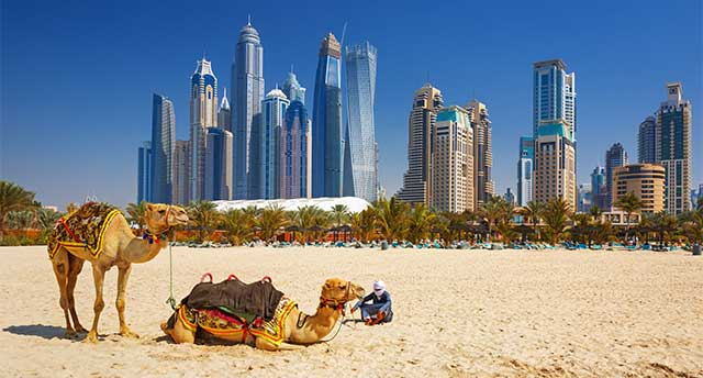 Desert-Surronding a City in the UAE